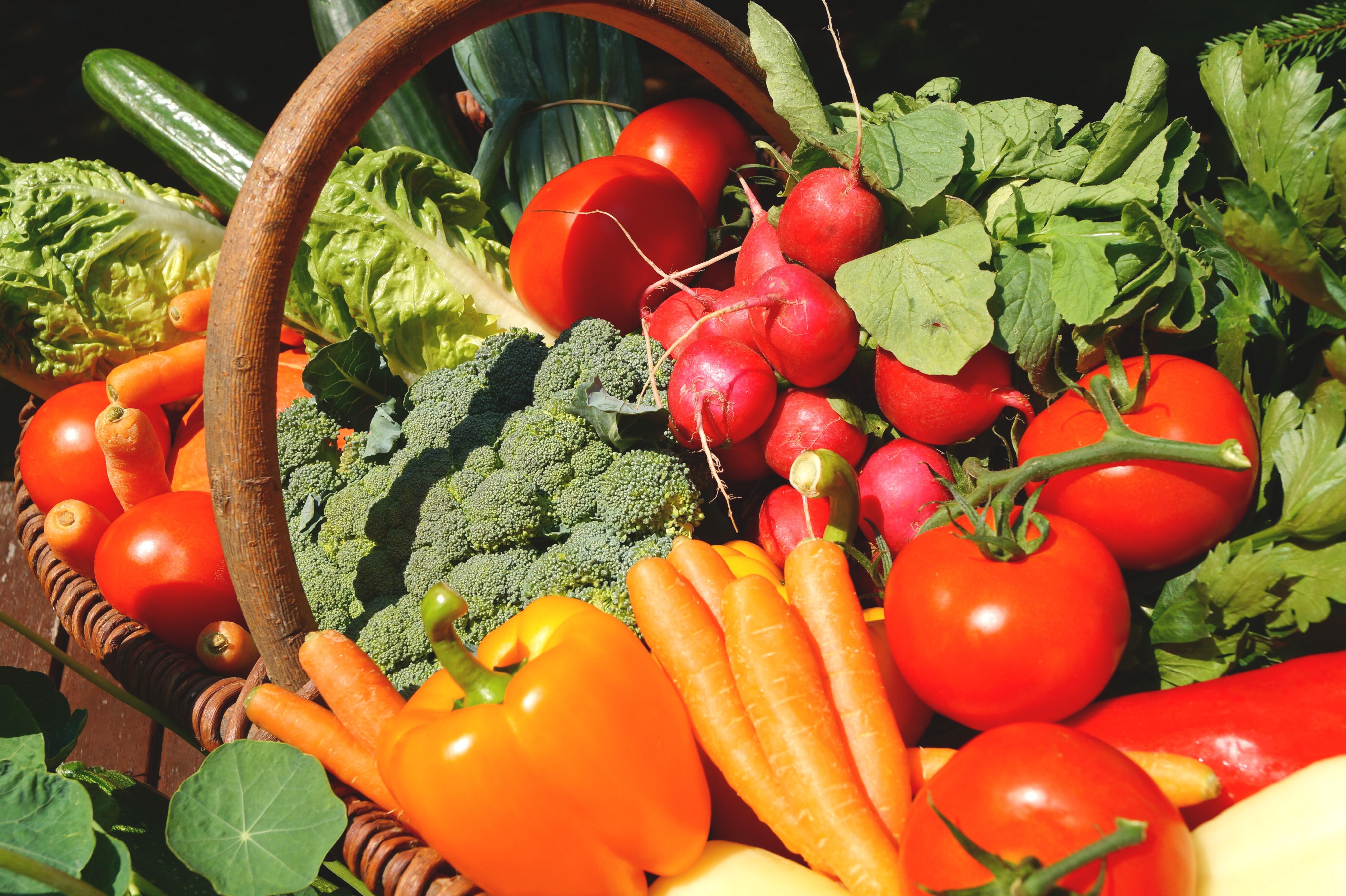 Brighter vegetables-3386212